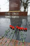 Flowers on the monument. Red carnations on the marble memorial to those killed in the Great Patriotic War of passage Royalty Free Stock Photos