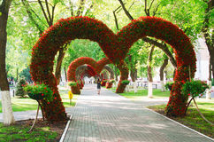 FLOWERS, MOSCOW REGION, HEARTS. Boulevard of floral hearts. Moscow region, Khimki Stock Photos