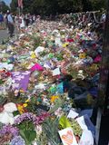 Flowers for the mosk attacks Christchurch 2019. Love royalty free stock images