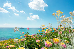 Flowers and motor yacht. Blue turquois sea water and sky. Yellow and pink flowers and motor yacht on blue turquois sea water and sky stock images