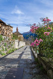 Flowers in mountain village. Anzasca Valley, Macugnaga royalty free stock image