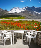 Flowers in Mountains, Restaurant Terrace View. Restaurant terrace view on field of red flowers and mountains Stock Photo
