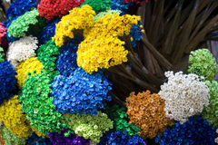 FLOWERS MULTI COLORS. Flower multi colors full of flowers Royalty Free Stock Photos