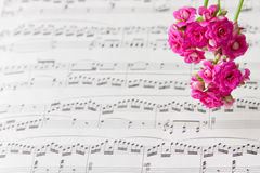 Flowers on music notes sheet, abstract art background . Stock Photo