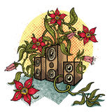Flowers and music speakers. Stock Images