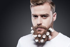 Flowers in my beard. royalty free stock photos