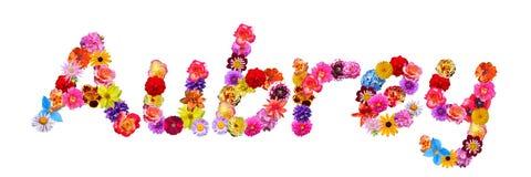 Flowers Name Aubrey Stock Image