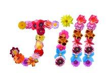 Flowers Name Jill Royalty Free Stock Photos