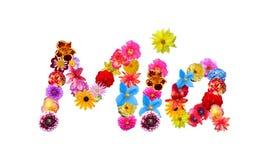 Flowers Name Mia Stock Image