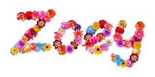 Flowers Name Zoey Stock Images