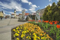 Flowers at Namestie SNP. Square at Banska Bystrica Royalty Free Stock Images