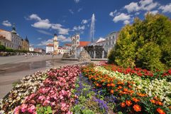 Flowers at Namestie SNP square at Banska Bystrica. With fountain and The Clock Tower Royalty Free Stock Images
