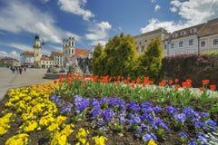 Flowers at Banska Bystrica. Flowers at Namestie SNP square Banska Bystrica, Slovakia Royalty Free Stock Photo
