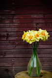 Flowers Narcissus Royalty Free Stock Photography