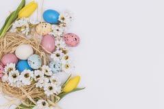 flowers near eggs nest. High quality beautiful photo concept