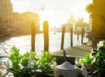 Flowers near the Grand Canal Royalty Free Stock Photos