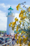 Flowers near the Grand Lighthouse. Royalty Free Stock Images