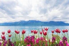 Flowers near lake, Montreux. Switzerland Royalty Free Stock Photo