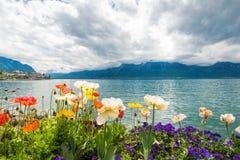 Flowers near lake, Montreux. Switzerland Stock Photography