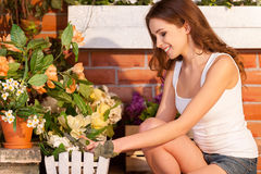 Flowers need a gentle touch. Royalty Free Stock Photo