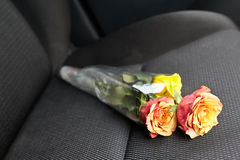 Flowers on the next seat Royalty Free Stock Photos