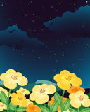 Flowers at night Stock Image