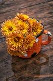 Flowers oaks Stock Image