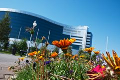 Flowers and office building Stock Photos