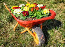 Flowers in an old cart Stock Photos