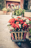 Flowers in an old cart Stock Image