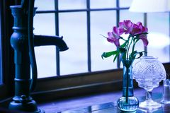 Flowers and an old fashioned hand water pump. Royalty Free Stock Photos