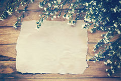 Flowers and old paper on wood texture background with copyspace. Stock Photography