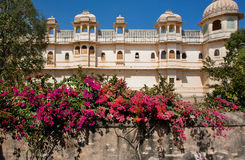 Flowers of old royal palace in India Royalty Free Stock Photo