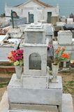 Flowers on old stone grave Stock Image