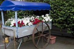 Flowers old wagon Stock Photos