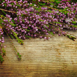 Flowers on the old wooden background Stock Images