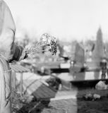 Flowers On The Grave. Royalty Free Stock Photos