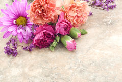 Flowers On Vintage Background Royalty Free Stock Photos