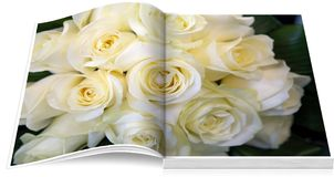 Flowers open book Royalty Free Stock Images