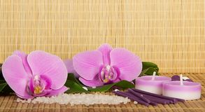 Flowers of an orchid and set for Spa Stock Images