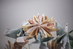 Flowers origami banknotes Stock Image