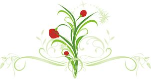 Flowers with ornament Royalty Free Stock Photos