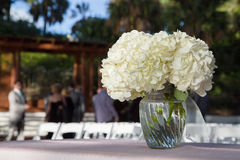 Flowers at outdoor wedding. Vase of white flowers with chairs and guests at outdoor wedding in background Royalty Free Stock Images