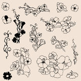 Flowers outlines. A set of small floral twigs drawing elements Stock Photography