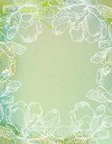Flowers over green watercolor brushstrokes Royalty Free Stock Photo