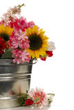 Flowers in Pail. Assortment of country flowers in metal pail showing only half for interest Royalty Free Stock Photos
