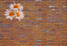 Flowers painted on the wall. Background Stock Photos