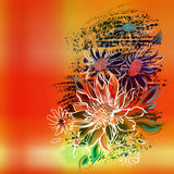 Flowers, painted white outline on an orange background Stock Images
