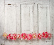 Flowers on a paneled vintage door Stock Photos