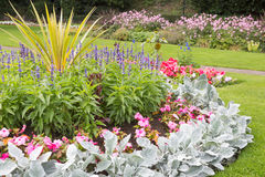 Flowers in park ornamental gardens Royalty Free Stock Photo